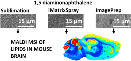 The use of 1,5-diaminonaphthalene for matrix-assisted laser desorption/ionization mass spectrometry imaging of brain in neurodegenerative disorders